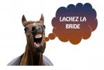 cheval elora.jpg